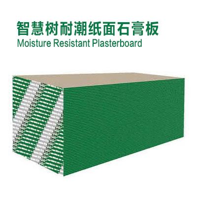 智慧树耐潮纸面石膏板